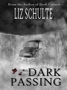 Five questions with Liz Schulte #booktour #interview